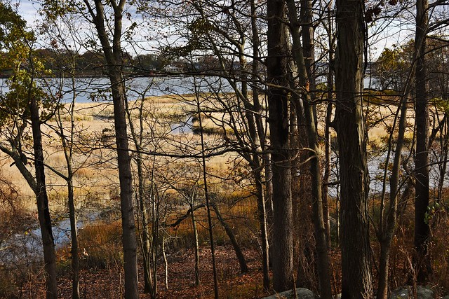 The Marshlands Conservancy in Westchester, New York