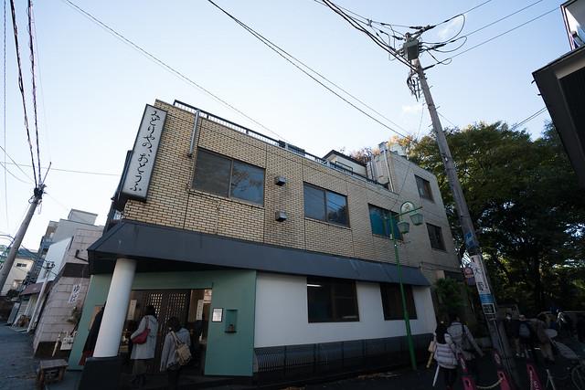 20171123_等々力渓谷_0008.jpg