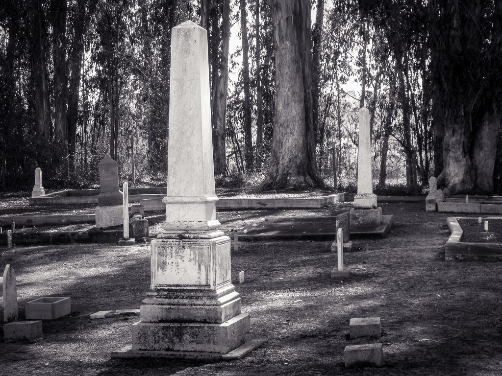 Cemetery_in_the_woods