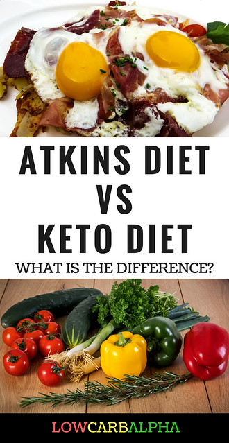 Atkins diet definition/meaning