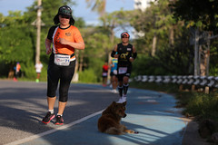 RYmarathon2017_Higlight-160