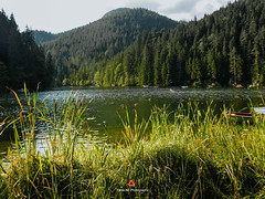 Lago Rojo, Rumania