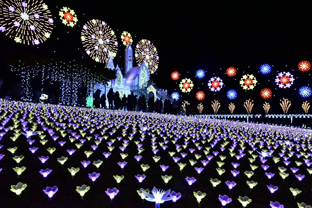 Ashikaga Flower Park Flower Fantasy 2017 09