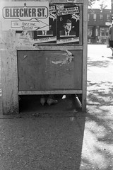 Spadina Avenue, Toronto,  1985