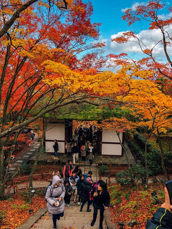 Kyoto2_21