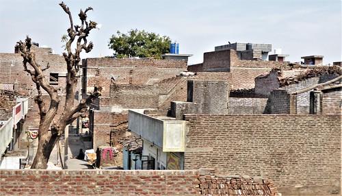 i-jodhpur-mount abu-route  (21)