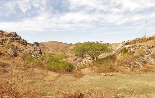 i-Kumbhagarh-Ranakpur-route (14)