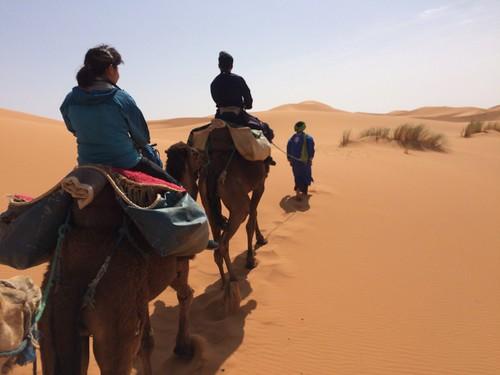 待ちに待った砂漠ツアー