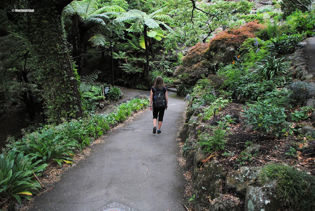Jenni Wellingtonin kasvitieteellisessä puutarhassa, Uusi-Seelanti