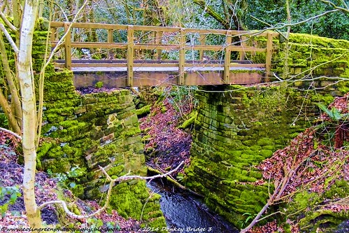 Donkey Bridge, Norland, West Yorkshire 3.