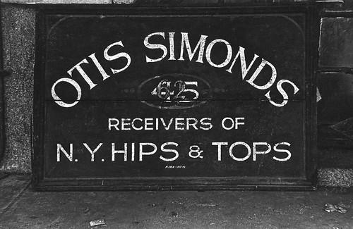 NY hips and tops