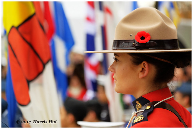 Lady Officer Standing In Front of Flags - Remembrance XT5117e