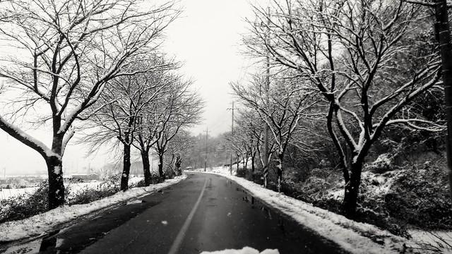 겨울 | 설경