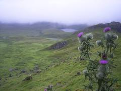 scotland 117.jpg
