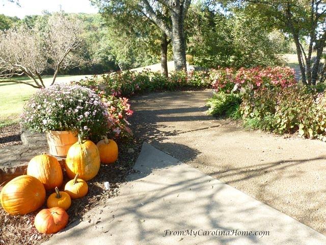 Cheekwood Gardens at From My Carolina Home