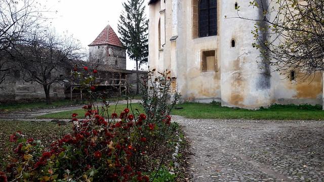 Cristian, Sibiu