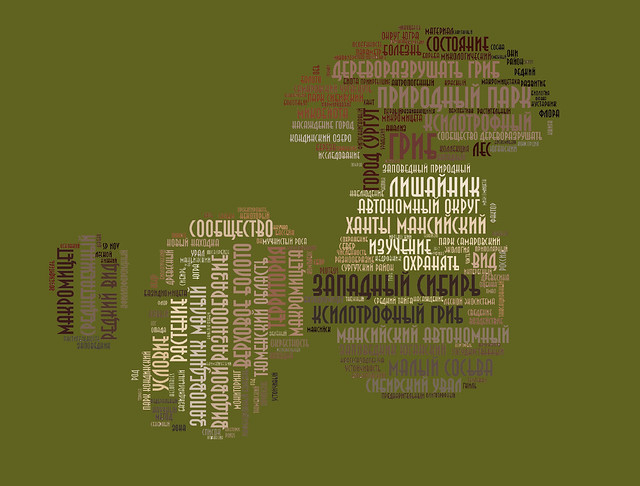 A cloud of words that resulted from the analysis of the Titles of mycological publications in Yugra.