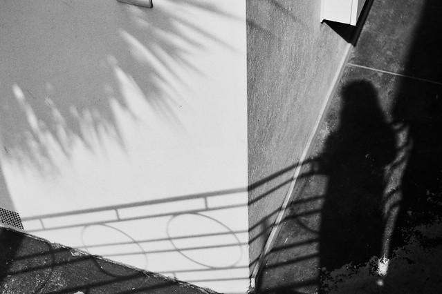 shadows b&w