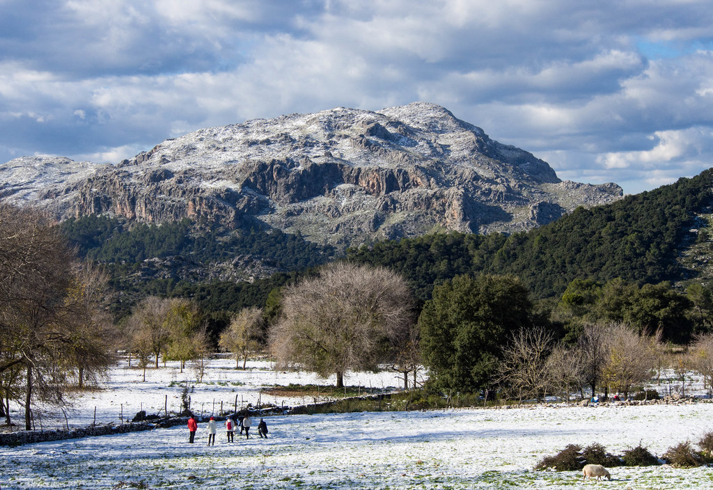 Snow in Mallorca