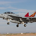 Boeing EF-18 Growler VAQ-129 Vikings colorbird-5045 by rob-the-org