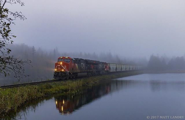 Through The Thick Fog