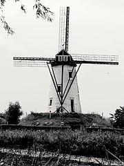 #Damme #Belgium #Windmill #ontheroad #OnTheRoad #Belgio #b&w #bn #bw #blackandwhite