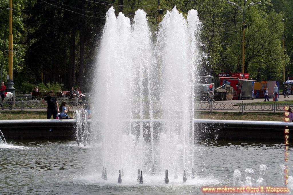 Фонтан в парке Сокольники.
