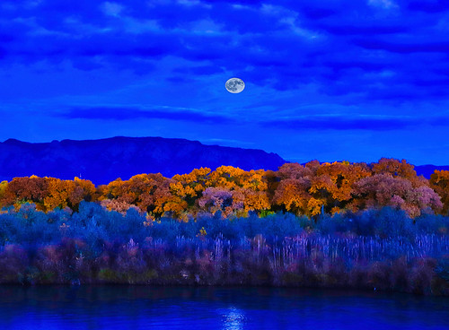 moon dusk sunset river bosque albuquerque nm newmexico riogrande clouds sky dark night moonrise canon canon6dii foliage fall colors reflection trees forest water luna lunar instagram explore ngc sandiamountains mountains mountain tree landscape landscapes astrophotography