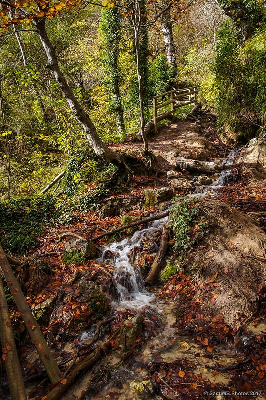 Agua por el camino