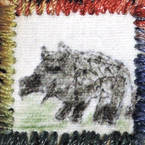 49_wild_boar