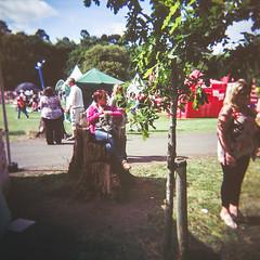 Raheny Rose Festival 5.