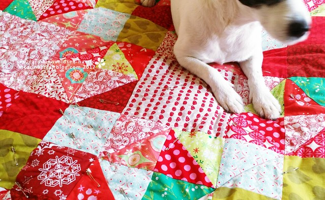 Blake and the Christmas quilt