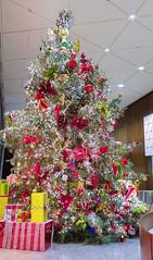 2017.12_Christmas in Atlanta