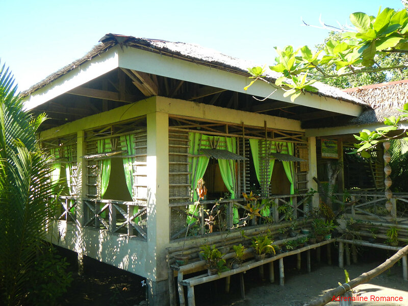 Center for International Mangrove Studies
