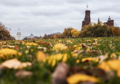 Fall on the Mall 2