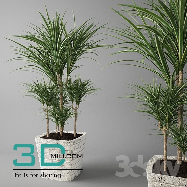 179  Plant 179 3dsmax Model Free Download - 3D Mili - Download 3D