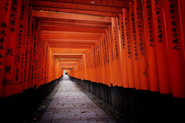 Fushimi Inari Taisha XLIX