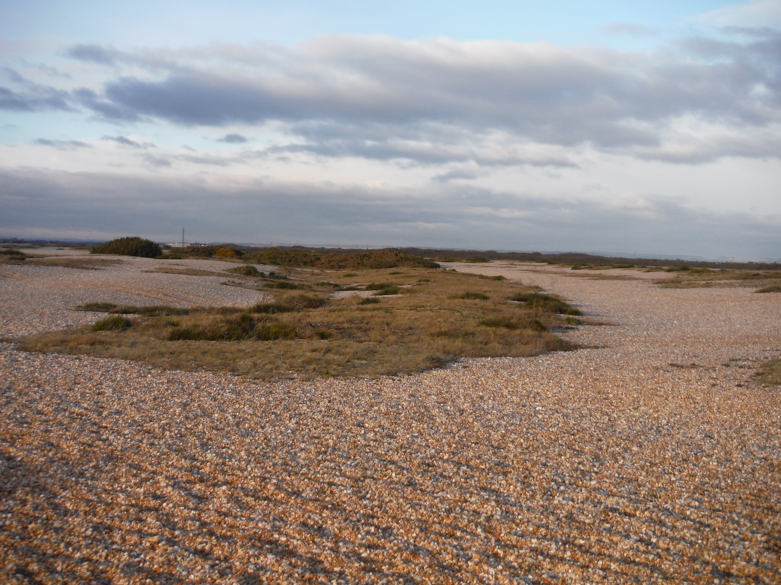 The UK's Only Desert: Dungeness NNR SWC 154 - Rye to Dungeness and Lydd-on-Sea or Lydd or Circular (Lydd Ending)