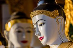 Buddha statues - Shwedagon Pagoda in Yangon, Myanmar