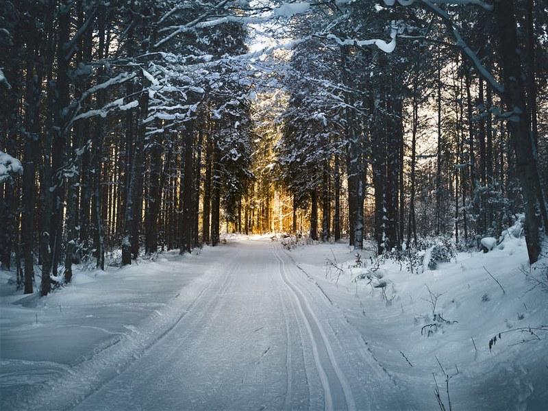 Talvi 02