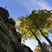 Royal Tunbridge Wells (High Rocks)