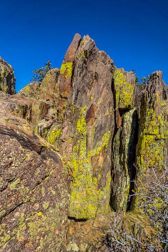 chasmview lookout gunnison gorge southrim blackcanyonofthegunnisonnationalpark colorado usa lichen russellscottimages