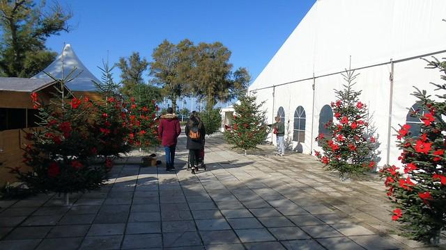 Χριστουγεννιάτικο Χωριό + Παγοδρόμιο στη Λευκάδα