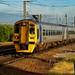 158824 Warrington D210bob