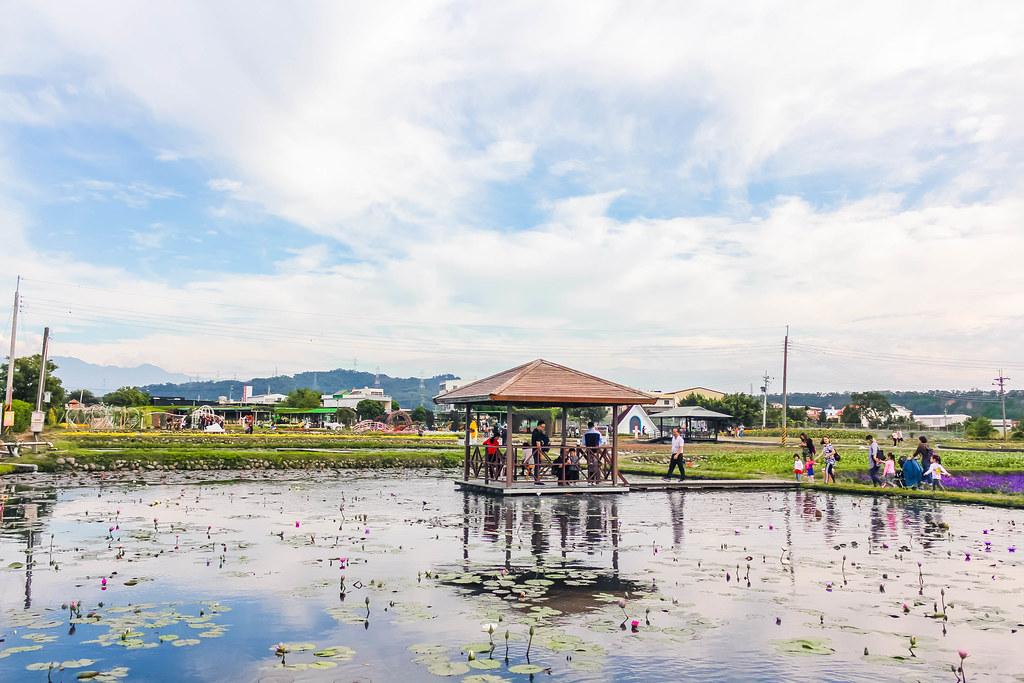zhong-she-guan-guang-flower-market-alexisjetsets-16