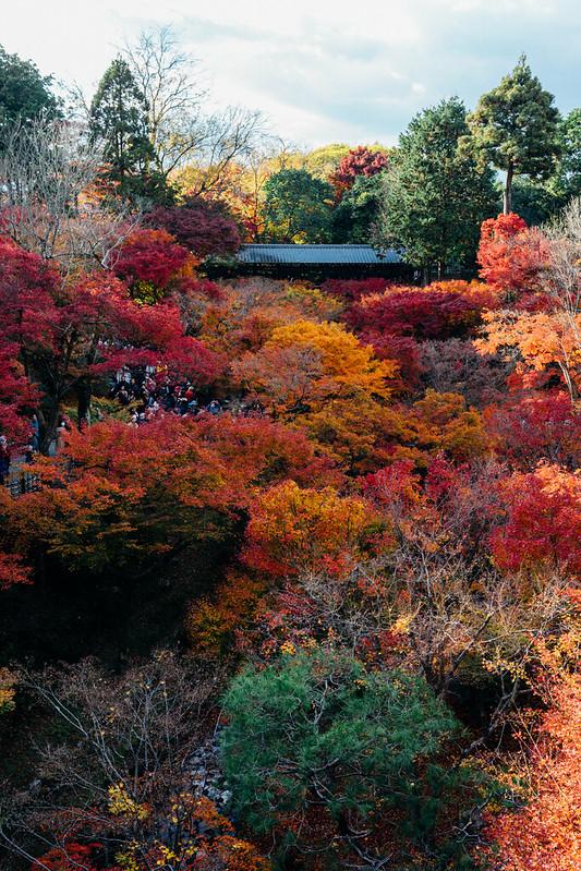 Kyoto_Tofuji_02