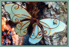 rusting buttterfly