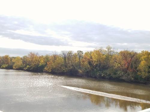 Fall Colors along the Anacostia
