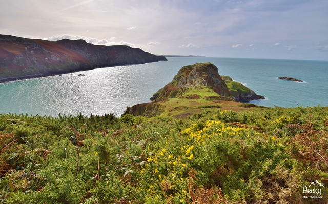 Pwll Deri to Strumble Head walk along the Pembrokeshire National Park