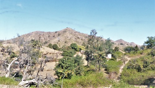 i-Mount Abu-udaipur (29)